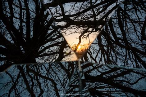 Luce nel labirinto