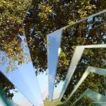 albero-frammento_IMG_7925