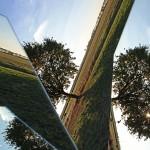 albero-frammento_IMG_8061