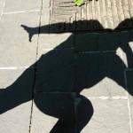 cose_buffe_ombra-ritratto2